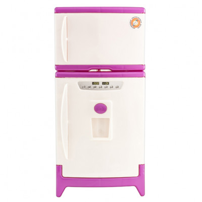 Холодильник двухкамерный 808